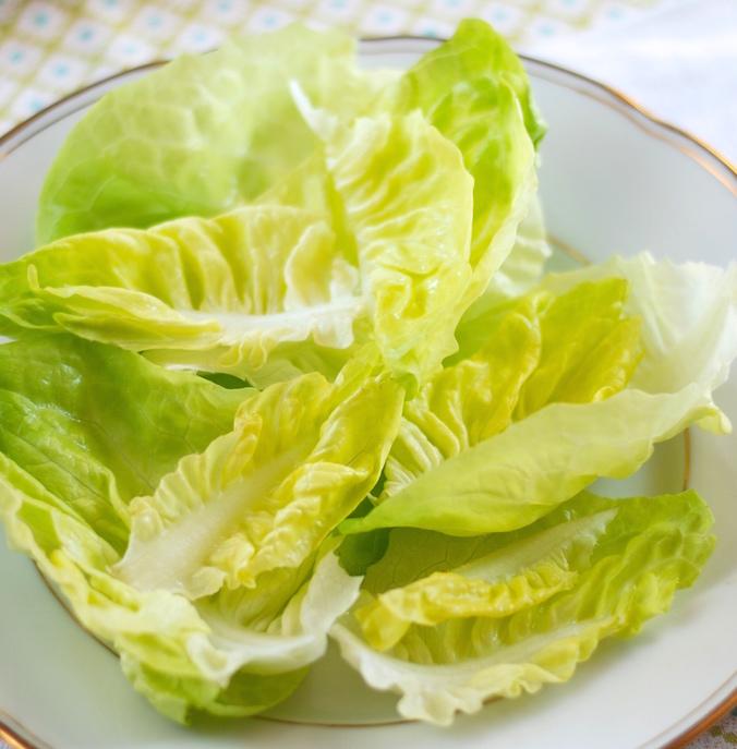 locika setá čili hlávkový salát