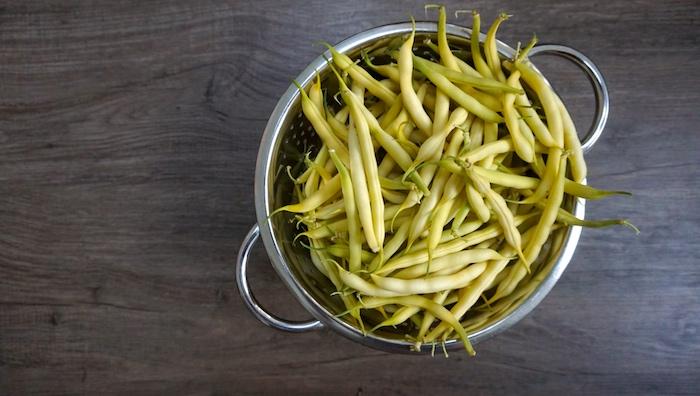 keříčkové fazolky